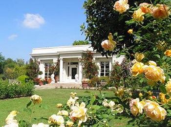 The Tea Garden at the Huntington Library and Gardens