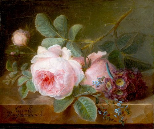 Cornelis van Spaendonck roses and forget me nots